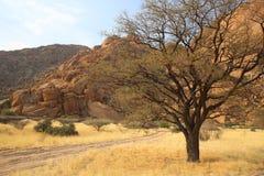 Namibian landschap Stock Afbeeldingen