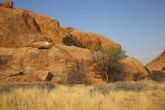 Namibian landschap royalty-vrije stock foto's
