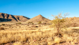 Namibian Nature Stock Photos
