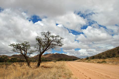 Namibian Road. Dirt Road at Rainy Season in Namibia Stock Photos