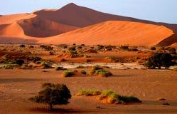 Namibian sand dunes stock images