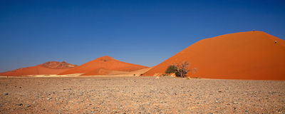 Namibian woestijn stock foto
