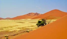 namibijski diuna piasek Zdjęcie Royalty Free