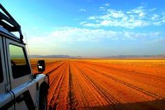 Namibische Safari Stockbild