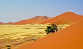 Namibische Sanddünen Lizenzfreies Stockfoto