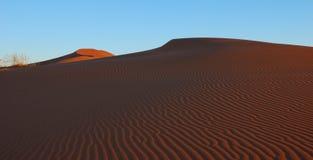 Namibische Wüste Stockbild