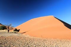 Namibisk öken Arkivfoton