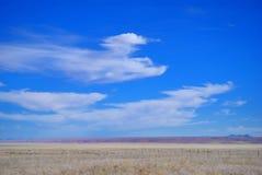 Namibisk savanna Arkivfoton