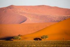Namibwoestijn, Sossusvlei bij zonsondergang Royalty-vrije Stock Foto