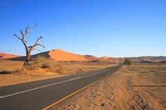 Namibwoestijn: Vroege ochtend in Sossusvlei royalty-vrije stock afbeelding