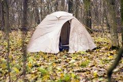 Namiot jest w jesień lesie Zdjęcie Royalty Free