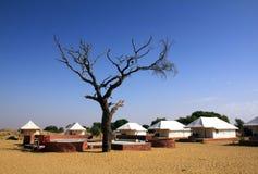 Namiot obozowa pobliska pustynia Zdjęcie Stock