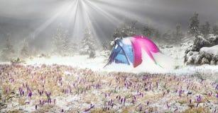 Namiot po burzy zdjęcie stock