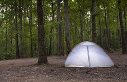 Namiot w ciemnienie lesie obraz stock
