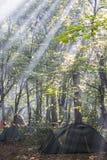 Namiotu obóz w ranku lesie promienie słońce przerwa przez liści zdjęcie stock