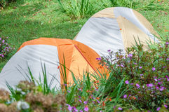 namioty campingowi fotografia royalty free