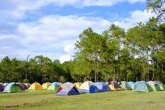 Namioty na zielonej trawie przy campingowym miejscem Zdjęcia Stock