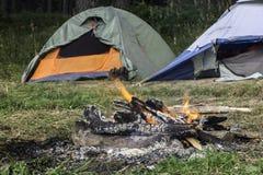 Namioty w lesie Obraz Stock