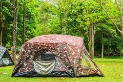 Namioty w parku narodowym Fotografia Stock
