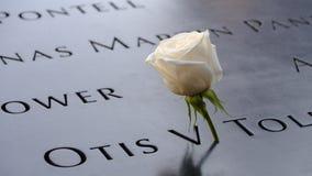 Namn och en ros på 9/11minnesmärkearna Arkivbild