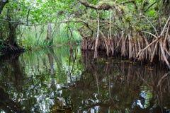 Namorzynowa laguna Zdjęcia Royalty Free