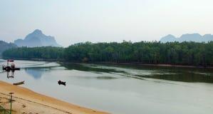Namorzynowy las, topiczny tropikalny las deszczowy w Tajlandia Obraz Royalty Free