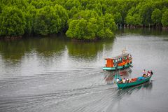 Namorzynowy lasowy resot w koh kong prowinci w królestwie Cambodia blisko Thailand granicy Zdjęcie Royalty Free