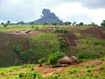Nampevodorp op de aard. Afrika, Mozambique. Stock Foto's