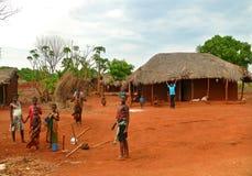 NAMPULA, MOZAMBICO - 6 DICEMBRE 2008: Lo stabilimento. Nazionale Fotografia Stock Libera da Diritti