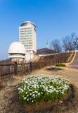 Namsan parkerar och tornet för N Seoul Arkivbilder