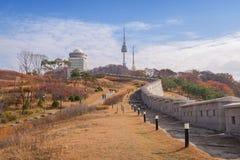 Namsan parkerar och tornet för N Seoul, Sydkorea Royaltyfri Fotografi