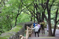 Namsan Seoul, Korea royalty free stock photos