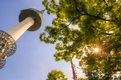 Namsan Tower Stock Images