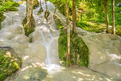 Namtok Bua Tong (Sticky waterfall) Royalty Free Stock Images