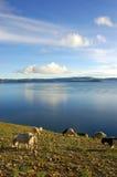 namtso λιμνών Στοκ φωτογραφία με δικαίωμα ελεύθερης χρήσης