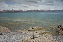 Namtso στο Θιβέτ Στοκ φωτογραφία με δικαίωμα ελεύθερης χρήσης