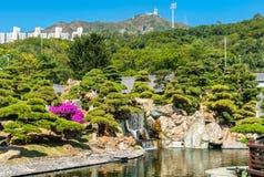 Nan Lian Garden en kinesisk klassisk trädgård i Hong Kong Arkivfoton