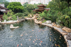 Nan Lian Garden,This is a government public park,situated at Dia. Mond hill,Kowloon,Hong Kong Stock Images