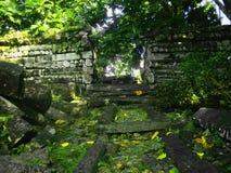 Nan Madol Ruins i Mikronesien royaltyfri bild