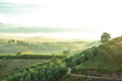 Nan province. Mountain view in the morning of Nan stock image