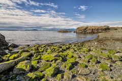 Nanaimo beach. In Neck Point park on Vancouver island , British Columbia Canada Stock Photo
