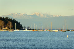 Nanaimo Harbor Anchorage and Coast Mountains Stock Image