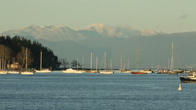 Nanaimo Harbor Anchorage and Mountains stock footage
