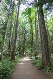 Nanaimo landskap Royaltyfria Bilder