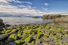 Nanaimo plaża Zdjęcie Stock