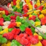 Nanas colorées Image stock
