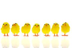 Nanas de Pâques Image stock