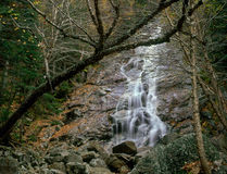 Nancy Cascades, Pemigewasset Wilderness, White Mountain National Forest, New Hampshire. A beautiful waterfall in the expansive Pemigewaset Wilderness easily stock photo