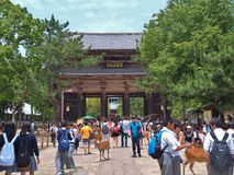 Nandaimon Gate, Todaiji Temple in Nara, Japan. Stock Photos