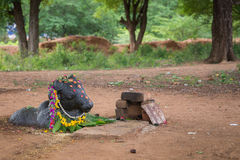 Nandi στη λάρνακα Shiva στο δάσος κοντά σε Kothamangalam Στοκ φωτογραφία με δικαίωμα ελεύθερης χρήσης